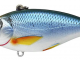 LIVE TARGET Golden Shiner Fishing