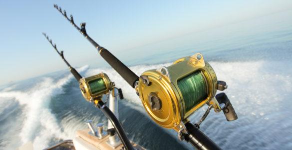 deep sea fihsing rods