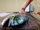 how to fillet mahi mahi