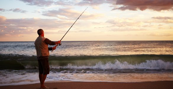 where to surf fish