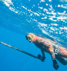 where to go spearfishing