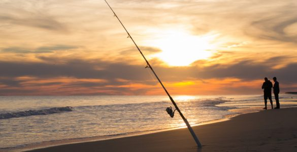 surf fishing rods on the beach