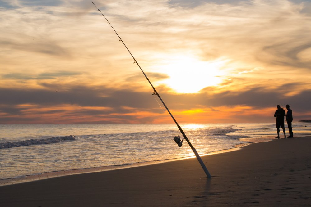 Best Surf Fishing Rods for 2019 | Fishmasters.com