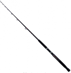 Best Surf Fishing Rods For 2019 Fishmasters Com