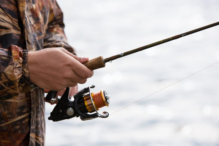 best rods for bass
