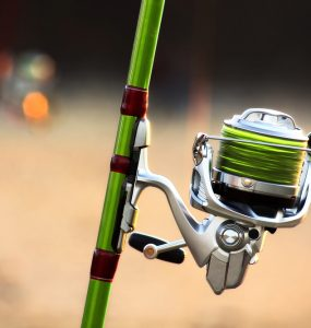 surf fishing line