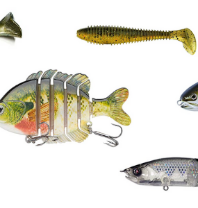 swimbaits for bass