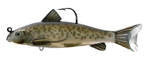live target sucker soft body swimbait for bass