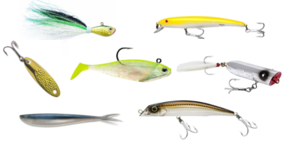 The Best Striped Bass Lures | Fishmasters com