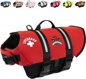 paws aboard dog life vest