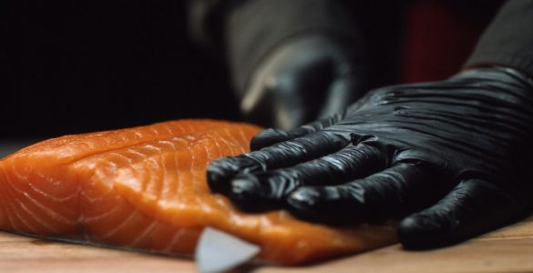 fishing fillet glove