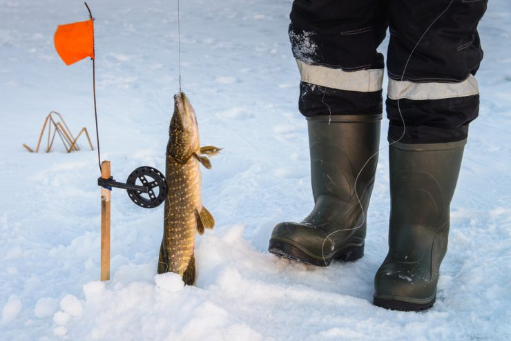 ice fishing tip up line