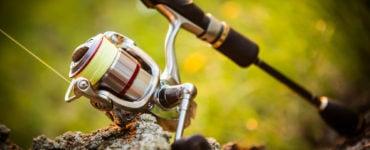 spinning reel cost under 100
