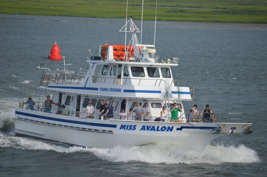 miss avalon party boat