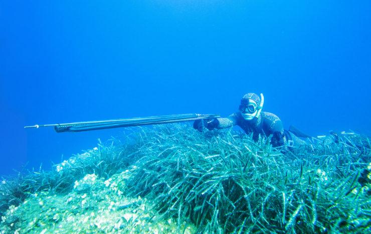 spearfishing gun