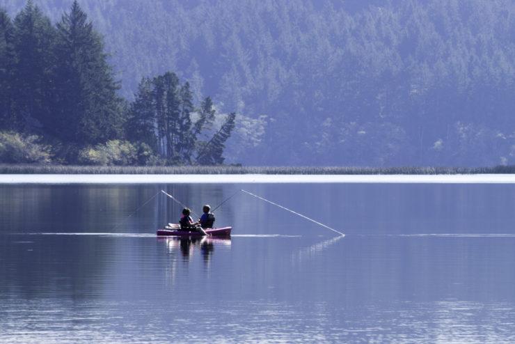 beautiful lake fishing in jackson county al