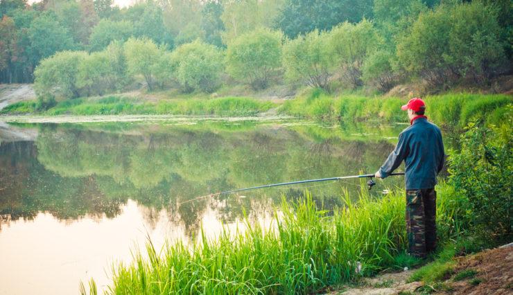 beautiful river fishing in tioga county pa