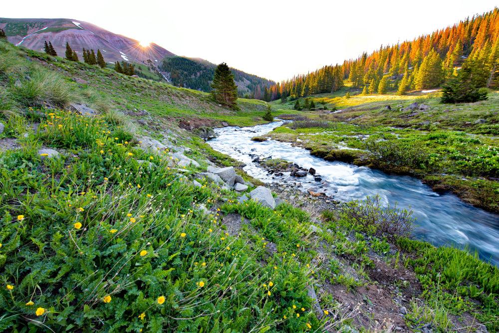 alaska trout stream