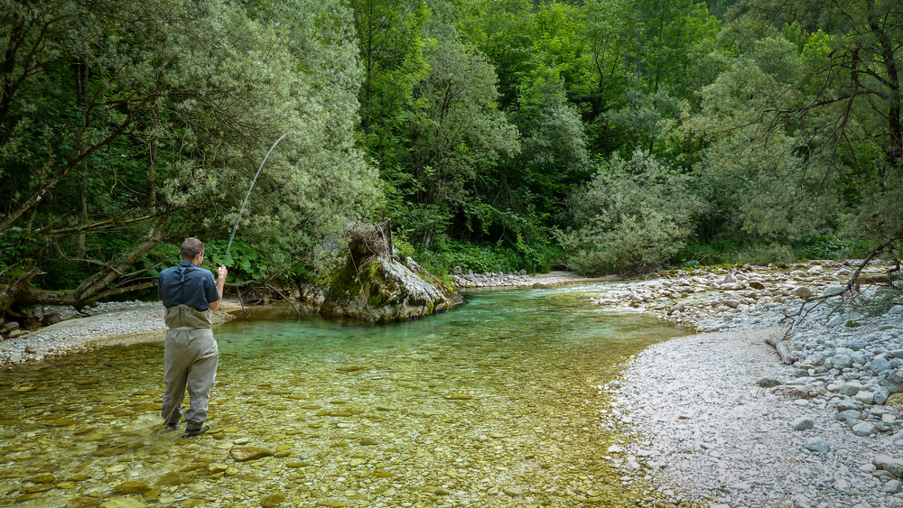 fishing for marble trout