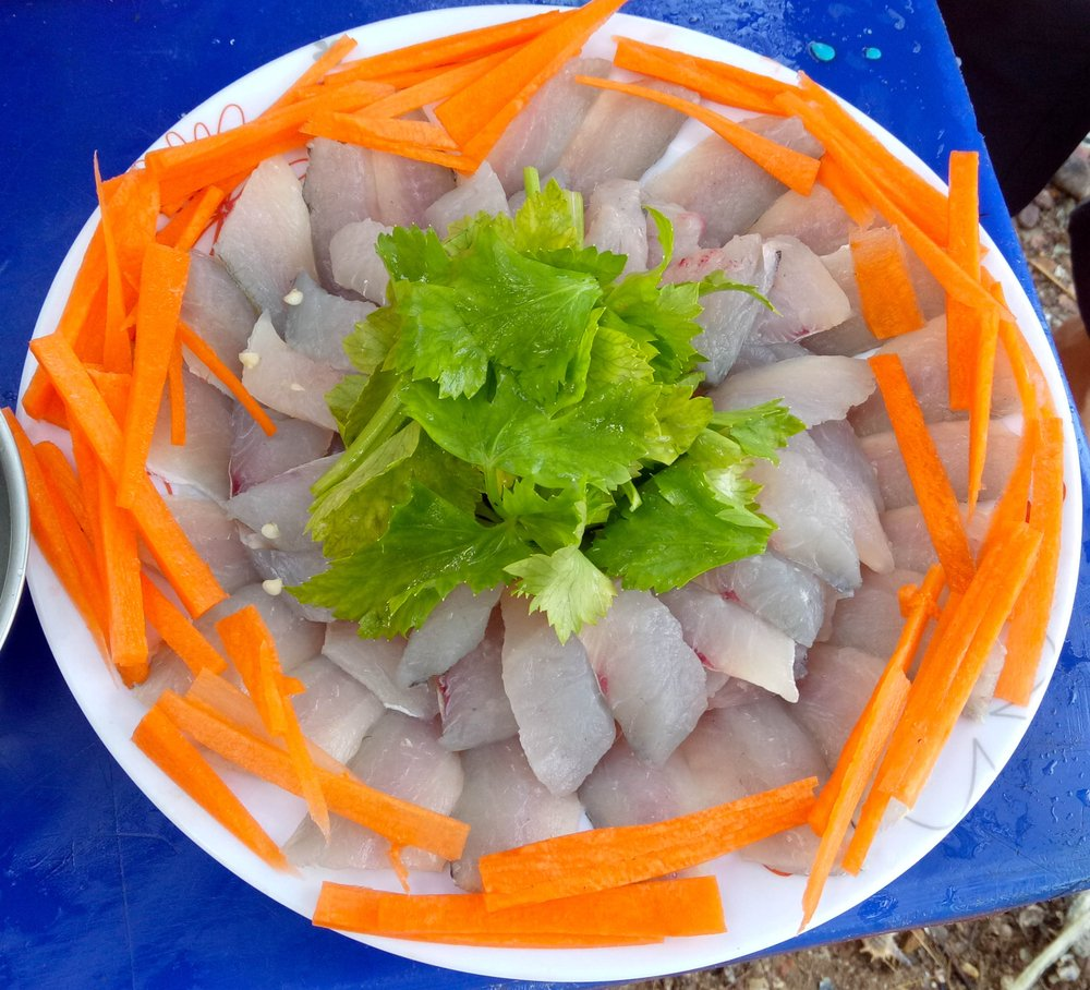 barracuda sashimi