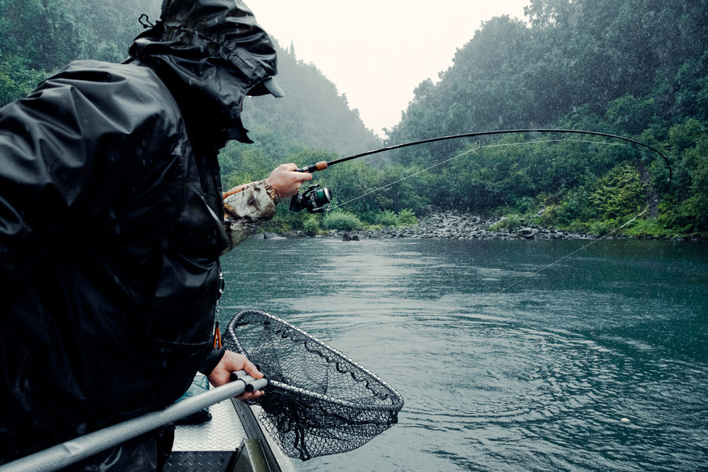 salmon fishing on the river