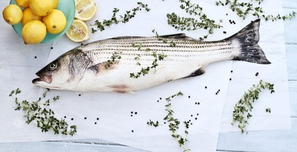 striped bass for dinner