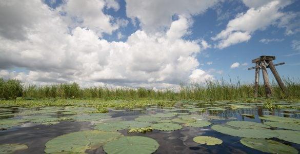 fishing lake in florida