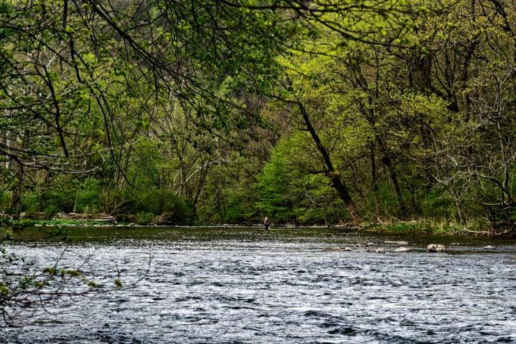 little juniata river fly fishing