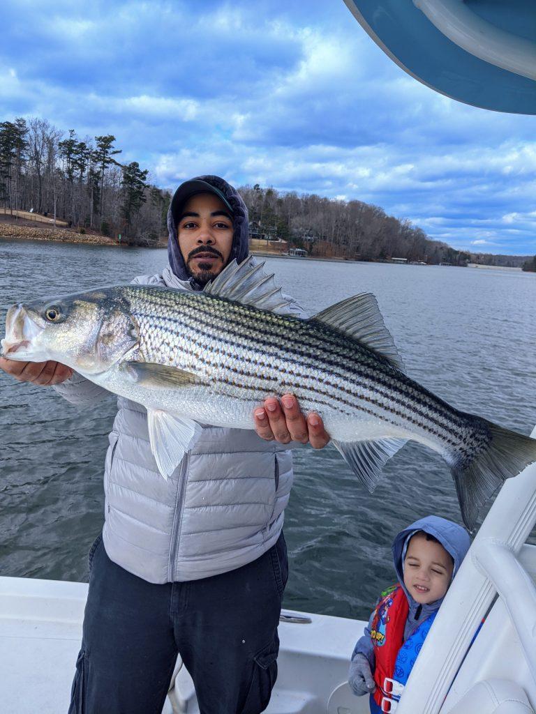 no excuses striper fishing lake lanier