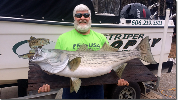 kentucky striper guide service
