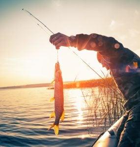 lake castaic fishing guides