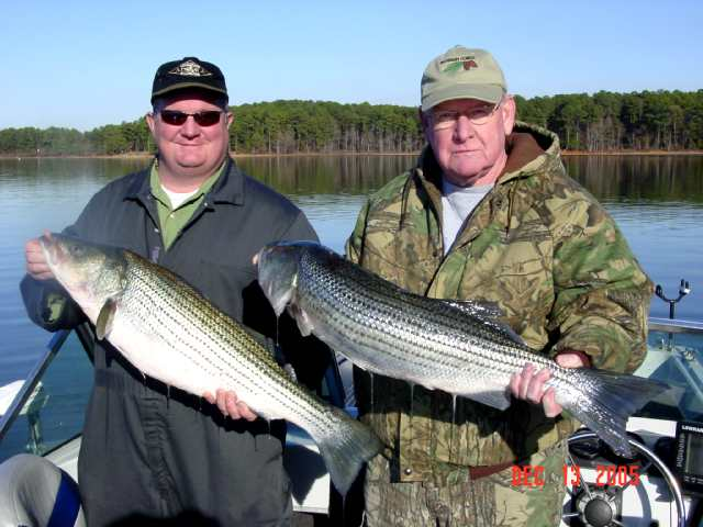 stripers unlimited