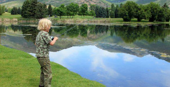 beaver lake fishing guides