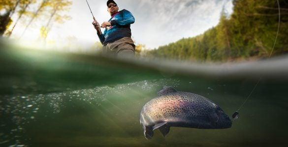 carlyle lake fishing guides