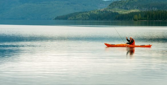 lake havasu fishing guides