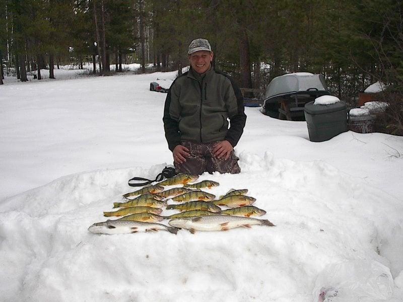 wild trout adventures